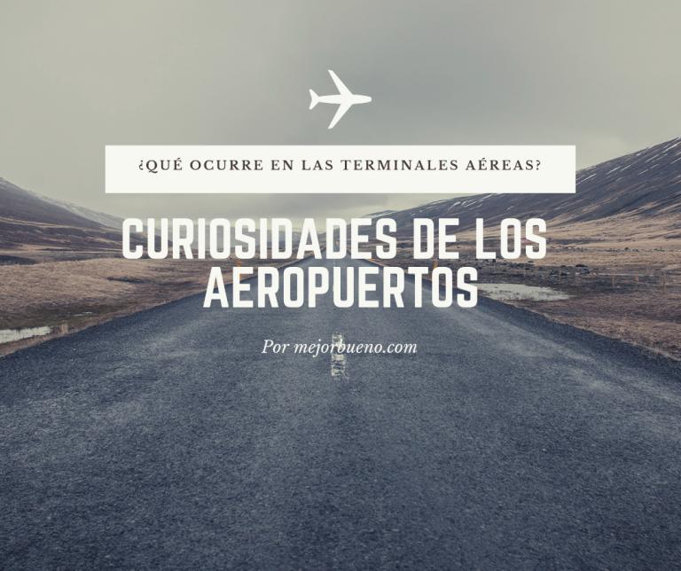 Curiosidades de los aeropuertos: ¿Qué ocurre en las terminales aéreas?